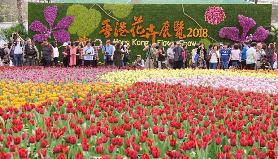 2018年香港花展开幕