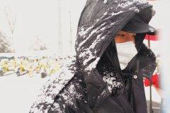 <b>风雪中的身影</b>