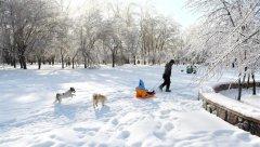 <b>赏雪</b>
