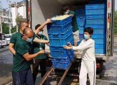 疫情无情人有情 虞城县金豆子公司为隔离小区免费送菜