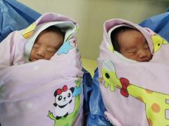 永州市首例夫精人工授精龙凤胎出生,辅助生殖技术开启