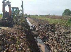安徽无为市金湾村:推进高标准农田项目建设 助力乡村